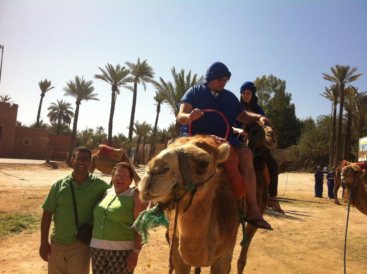 camello4